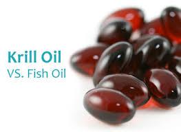 Omegak krill oil best multivitamins guide for Is krill oil better than fish oil